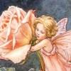 Rose118 avatar