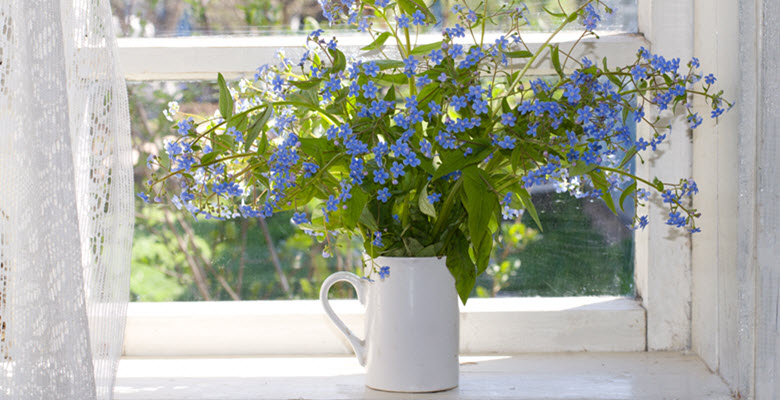 A vase of blue flowers on a windowsill