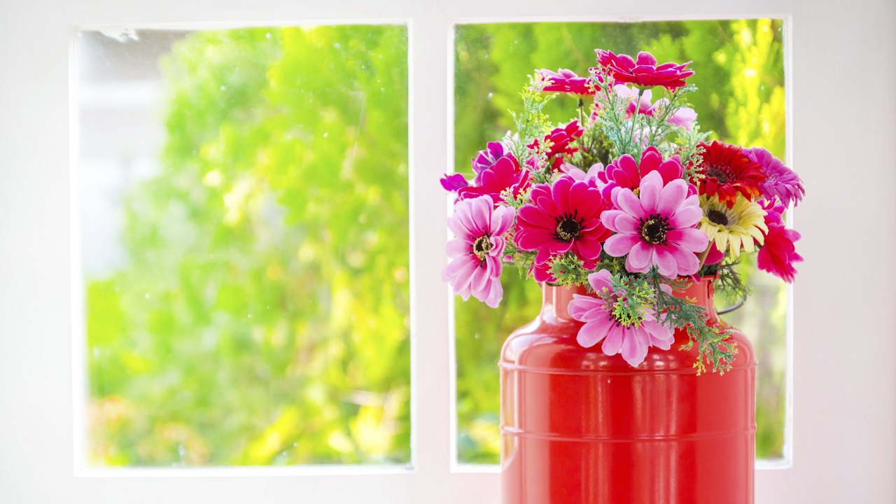 Spring Cleaning: How to Refresh Your Caregiving Routine-Image