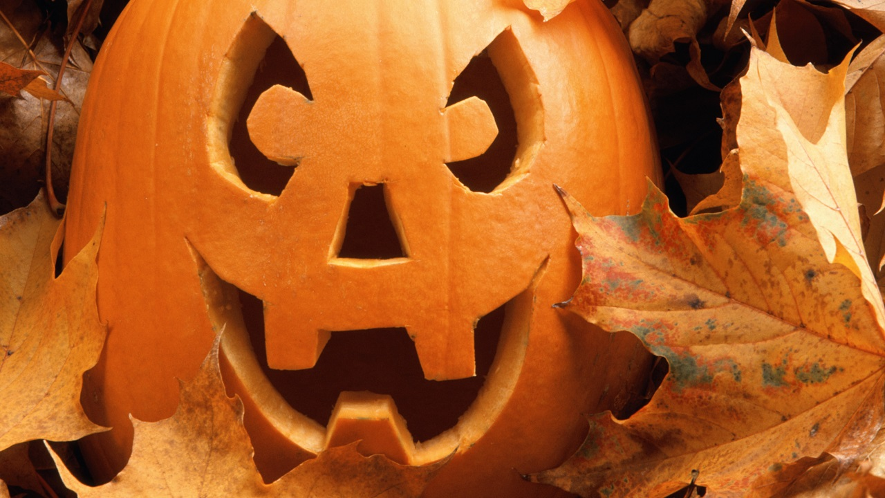 4 Tricks to Ensure a Happy Halloween for Elderly Loved Ones-Image