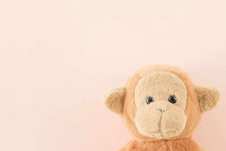 Stuffed monkey with pink background