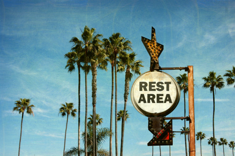 Vintage rest area sign with palm trees in background.