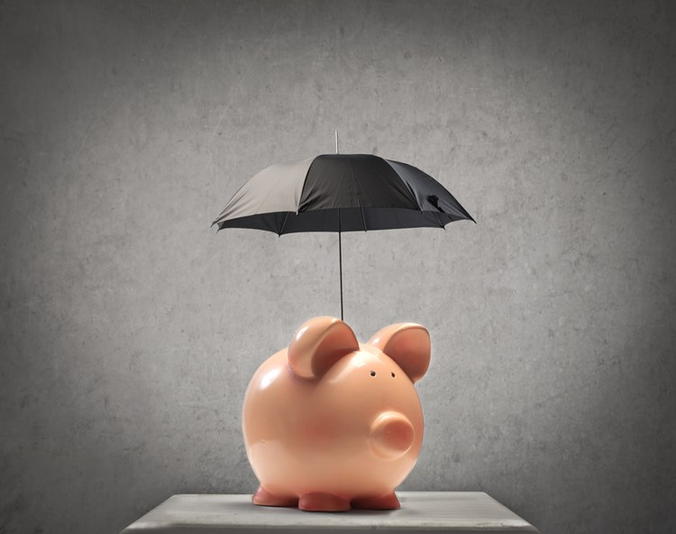 Piggy bank with an umbrella covering it for protection
