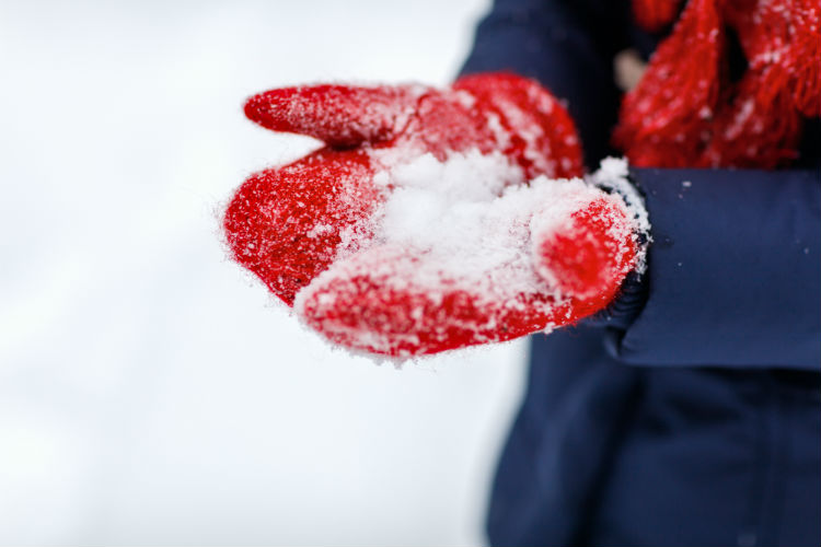 Red wool gloves in snow.