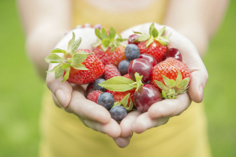 Taking a Bite Out of Senior Diet Myths-Image