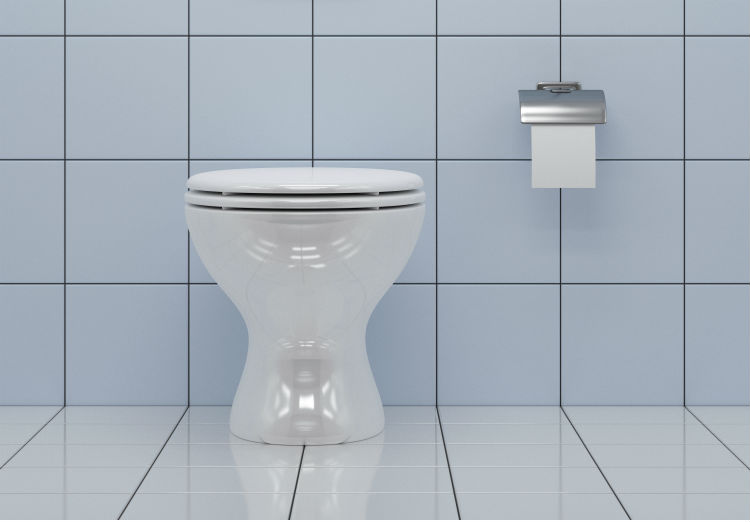 Prime Bidet Attachments The Toilet Tweak That Can Keep An Older Ibusinesslaw Wood Chair Design Ideas Ibusinesslaworg