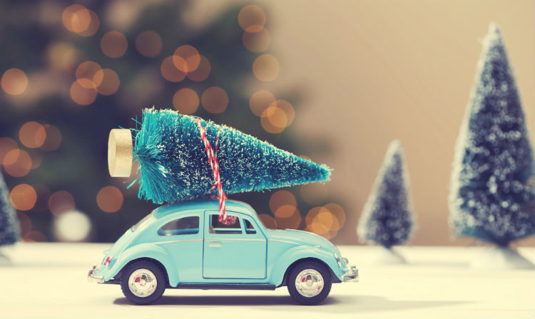 Car with Christmas Tree on Top