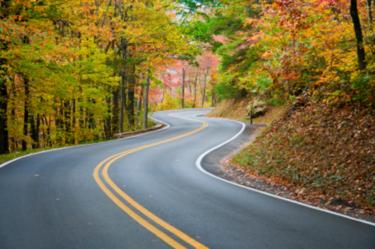Fun Fall Activities for Seniors and Their Caregivers-Image