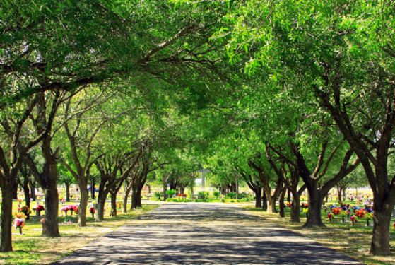 Palm valley memorial gardens pharr tx cemetery - Valley memorial gardens mission tx ...