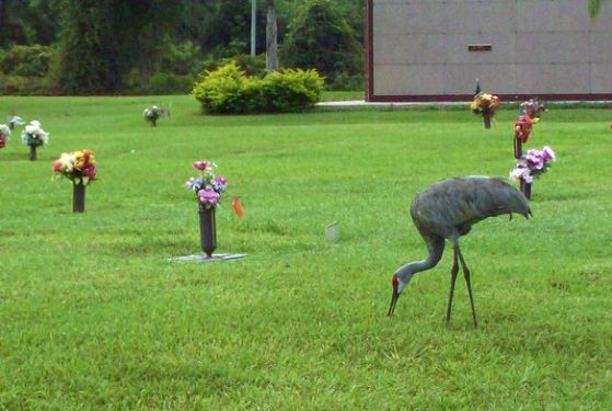 Fountainhead Memorial Park at Palm Bay, FL