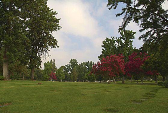 Live Oak Memorial Park at Monrovia, CA