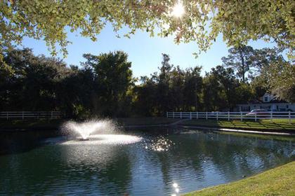 Brookdale Orange Park at Orange Park, FL