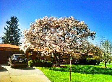 Bloomfield Villa at Farmington Hills, MI