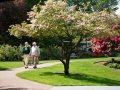 Ida Culver House Ravenna at Seattle, WA