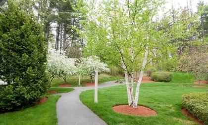 Tatnuck Park At Worcester at Worcester, MA