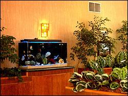 The Atrium of Carmichael at Zamora, CA