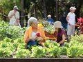 Gulf Coast Village Retirement Community at Cape Coral, FL