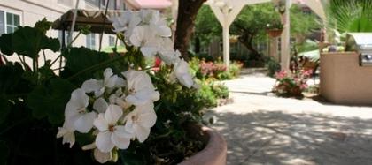 The Gardens of Sun City at Sun City, AZ