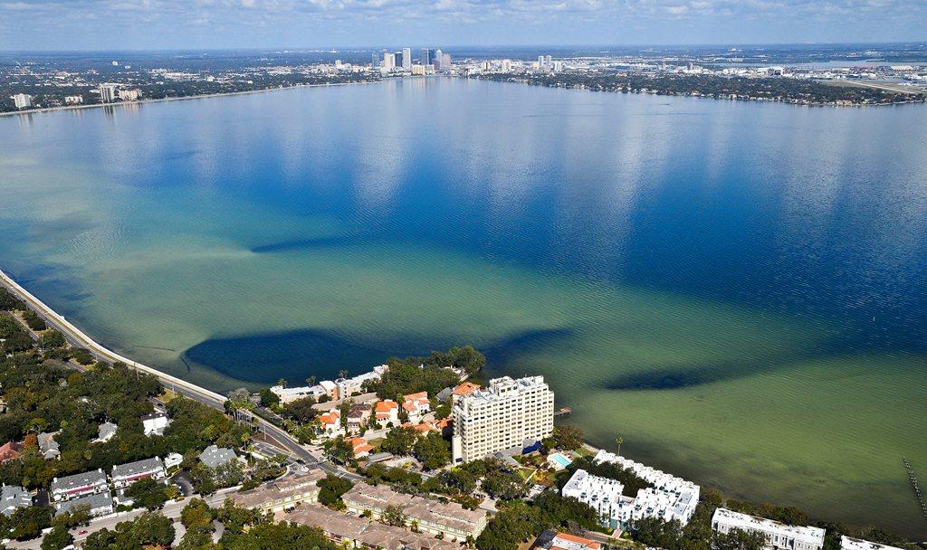 Brookdale Bayshore at Tampa, FL