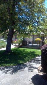 Nazareth Rose Garden of Napa at Napa, CA