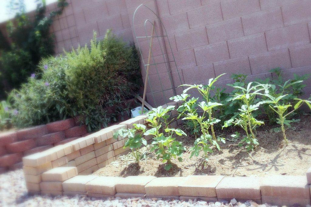 Cornerstone Assisted Living Home at Phoenix, AZ