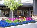 Maple Ridge at Freeland, WA